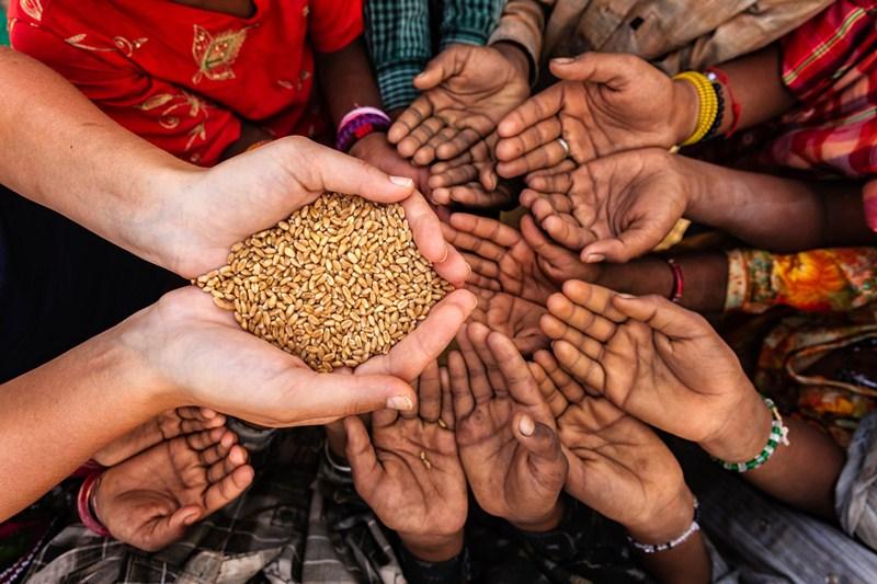 trẻ em cần cung cấp thực phẩm lành mạnh, giàu dinh dưỡng.